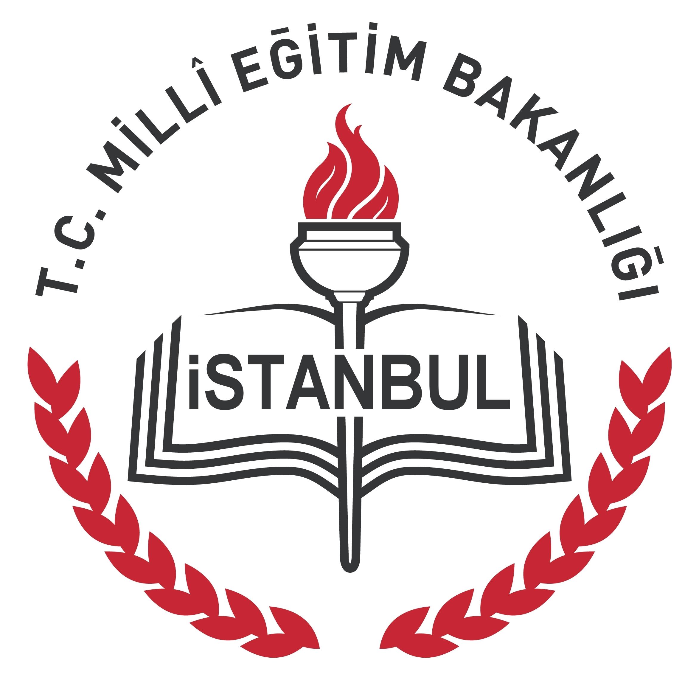 Logo ILMEM